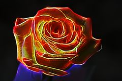 Large red rose neon effect. The glow effect. Surrealism. Dark ba. Ckground Stock Image