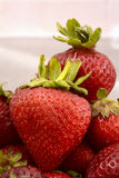 Large red strawberries Royalty Free Stock Photography