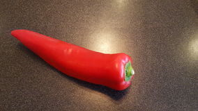 A large red sweet chilli. A large red sweet chilli on a kitchen counter Royalty Free Stock Photography
