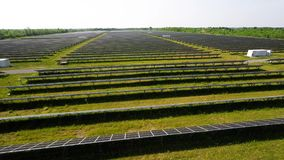 Large Renewable Green Energy Solar Farm with many Photovoltaic Panels across Acres of land. Renewable Green Energy Solar Farm with many Photovoltaic Panels stock video