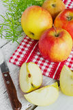 Large ripe apples and a knife Stock Photography