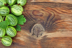 Large ripe green gooseberries Royalty Free Stock Photo