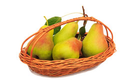 Large ripe pears in a wicker basket on a white background. Stock Images