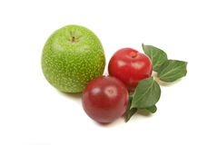 Large ripe plums and nectarines spotty green apple, healthy ingr. Edient isolated on white background Stock Images