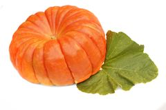 Large Ripe Pumpkin with Leaf Stock Photo