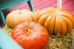 Large ripe pumpkins on the hay Stock Photos