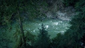 Large River In Wilderness Forest stock footage