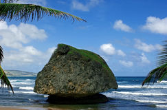 Large rock at bathsheba Stock Images