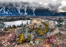 Large Rock With Colorful Moss Stock Photography