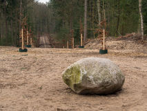 Large Rock In Forest With Path Leading Away Into The Distance Stock Images