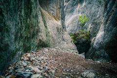 Large rock in the mountains Royalty Free Stock Photography