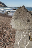 Large Rock with White Veins Royalty Free Stock Photo