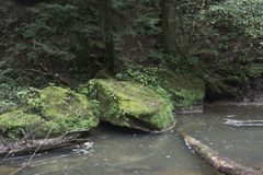 Large rocks and logs in stream. Large moss covered rocks and logs at the edge of a slow moving creek in Hocking Hills State Forest at the Old Man`s Cave area royalty free stock image