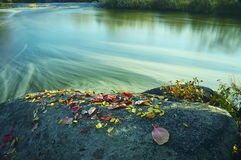 Large rocks on the river bank with autumn colorful fallen leaves. Royalty Free Stock Images