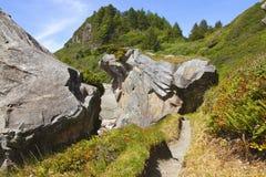 Large rocks and vegetation, Oregon coast. Stock Photos