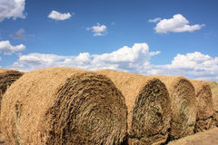 Large Rolls of Hay. Against a bright blue sky with fluffy white clouds stock photography
