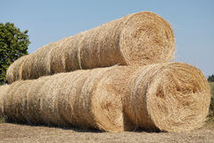 Large rolls of hay Royalty Free Stock Image