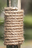 Large rope on bamboo tree Royalty Free Stock Photography