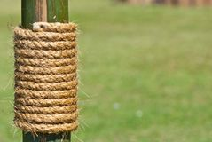 Large rope on bamboo tree with green grass Royalty Free Stock Photography