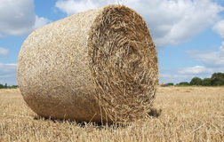 Large round bail. On its own in a cut field royalty free stock image