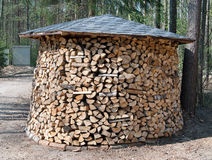 Large round firewood prepared in forest Stock Photo
