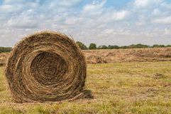 Large round grass hay bale. A single large round grass hay bale on a rural Missouri farm field Stock Images
