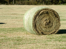Large Round Hay Bale in a Field Royalty Free Stock Photography