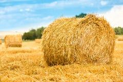 Large round straw bale Royalty Free Stock Photography