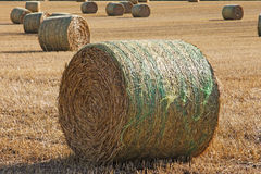 Large Round Straw Bales in a Field Royalty Free Stock Photos
