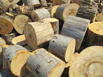 Large round tree stumps. Piles of large round tree stumps used to cut into logs for firewood Stock Image