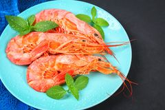 Large royal raw frozen prawns on a blue plate with thyme and bas. Il on a concrete table. Red shrimps. Top view Royalty Free Stock Photos