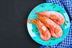 Large royal raw frozen prawns on a blue plate with thyme and basil on a concrete table. Red shrimps. Top view. Large royal raw frozen prawns on a blue plate Royalty Free Stock Photo