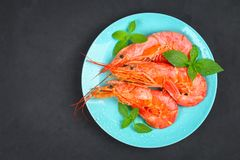 Large royal raw frozen prawns on a blue plate with thyme and basil on a concrete table. Red shrimps. Top view. Large royal raw frozen prawns on a blue plate Stock Photos