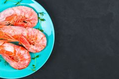 Large royal raw frozen prawns on a blue plate with thyme and basil on a concrete table. Red shrimps. Top view. Large royal raw frozen prawns on a blue plate Stock Photography