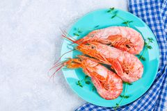 Large royal raw frozen prawns on a blue plate with thyme and basil on a concrete table. Red shrimps. Top view. Large royal raw frozen prawns on a blue plate Stock Images