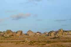 Large Rugged Rock formations Along the Coast of Aruba Stock Photography