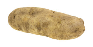 Large russet potato. A large russet potato on a white background royalty free stock images