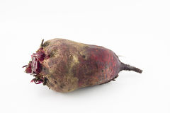 Large rustic beets on a white background. With shadows Stock Image