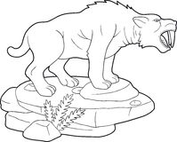 Large saber-toothed tiger. Looking for prey Stock Image