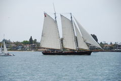 Large Sail Boat Royalty Free Stock Images