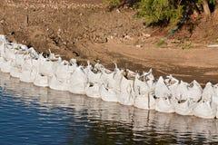 Large sandbag flood defences Royalty Free Stock Image