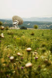 Large satellite dishes in countryside. (Vertical, Shallow depth of field Royalty Free Stock Image