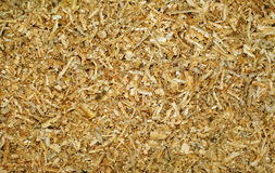 Large sawdust lying evenly as background Stock Photography