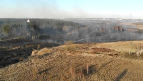 Large-scale fires. Burning grass and trees in a large area.