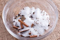 Large sea salt with red and black pepper,  cinnamon stick Royalty Free Stock Photography