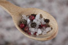 Large sea salt with red and black pepper Stock Image