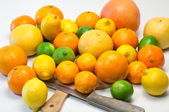 Large selection on citrus fruits Stock Photo
