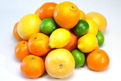 Large selection on citrus fruits Royalty Free Stock Photo