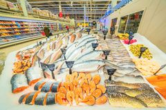 A large selection of fresh fish lying in the ice on the counter of the supermarket. Text in Russian: salmon, steak, piece, carp, Sylvia, pollock, cod, Atlantic royalty free stock photo