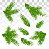 Set of green pine branches. Isolated. Christmas. Decor. The Chri. A large set of different green pine branches. Isolated. Christmas. Decor. Green lush spruce or Stock Image